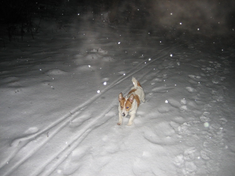 Schnee 037