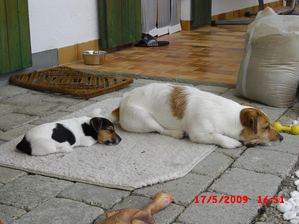Eddie&Hummel009