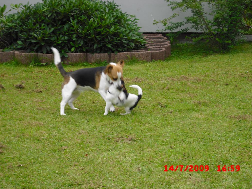 Eddie&Hummel019